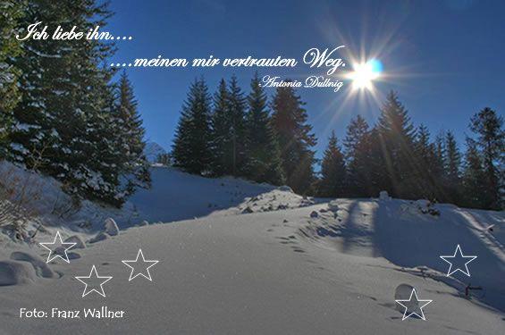Weihnachts-Und Neujahrswünsche